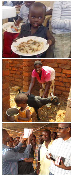 Supplying meals in an orphanage, animal husbandry and distributing Bibles.